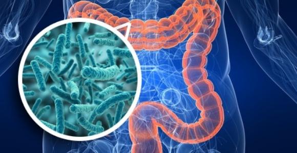 Escherichia coli o26 síntomas de diabetes