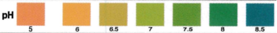 pH en la orina