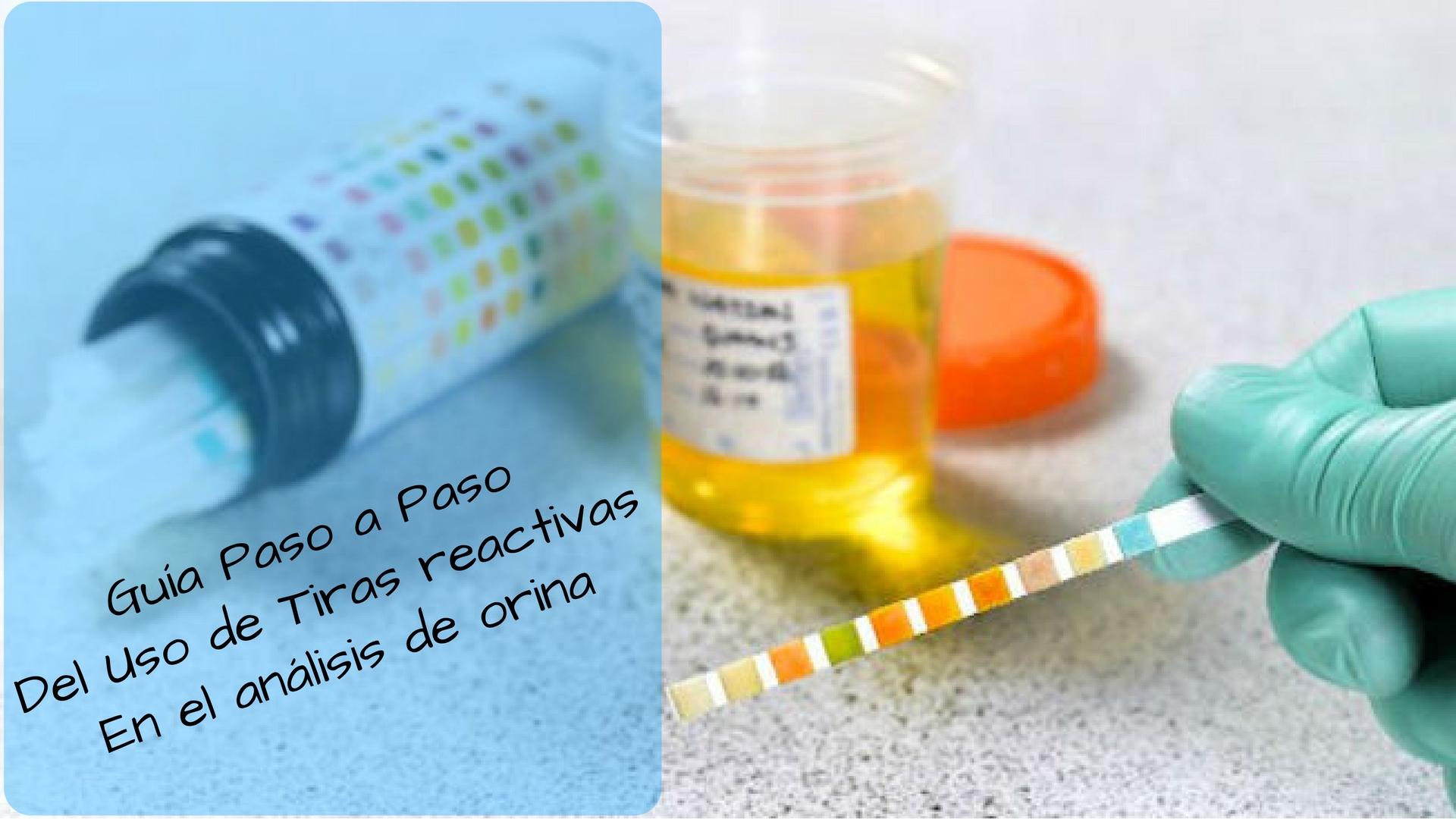 instrucciones de prueba de diabetes de embarazo